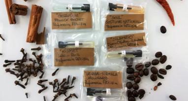 Kit Samples